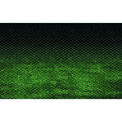 Wandverkleidung Komar Splendid 400x250 cm