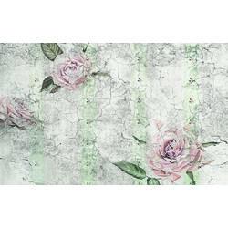 Wandverkleidung Komar Tantinet 400x250 cm
