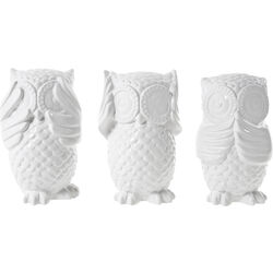 Money Box Eule Assorted