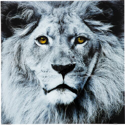 Picture Glass Face Lion 80x80cm