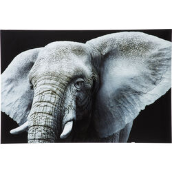 Picture Glass Face Elefant 80x120cm