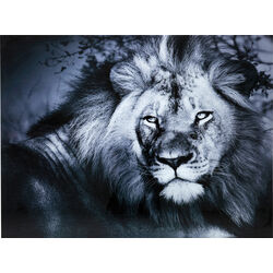 Picture Glass Lion King Lying 120x160cm