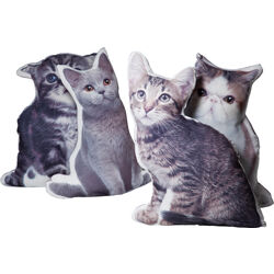 Cushion Pussy Cat Assorted