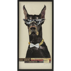 Picture  Frame Art Cool Dog 121x61cm
