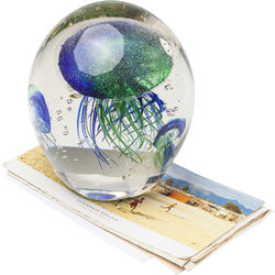 Paperweight Visible Jellyfish Rainbow
