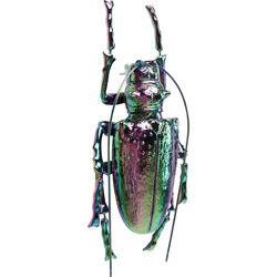 Wall Decoration Longicorn Beetle Rainbow