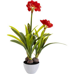 Deco Plant Amaryllis Red 98