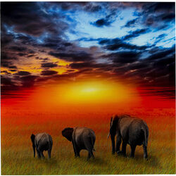 Picture Glass Savanne Elefants 100x100
