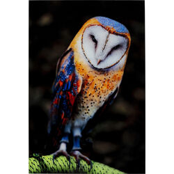 Picture Glass  Cute Owl 120x80