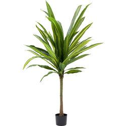 Deco Plant Dracaena Fragrans 180cm