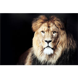 Glass Picture King of Lion 150x100