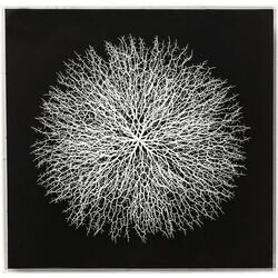 Deco Frame Vascular Black 90x90cm