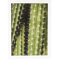 Picture Frame Cactus 45x33cm