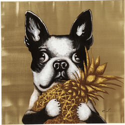 Bild Touched Dog with Pineapple 80x80cm