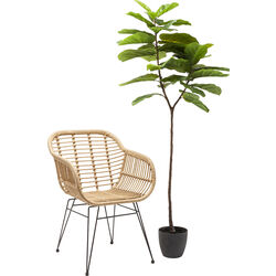 Deco Plant Leaf Tree 170cm
