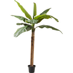 Deco Plant  Banana Tree 190cm