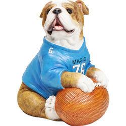 Money Box Football Dog