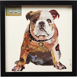 Picture Frame Art Bulldog 41x41cm