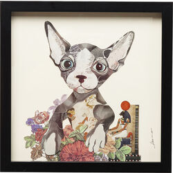 Picture Frame Art Flower Cat 41x41cm