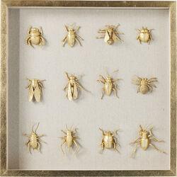 Deco Frame Bugs 60x60cm