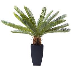 Deco Plant Cycas Tree 78cm