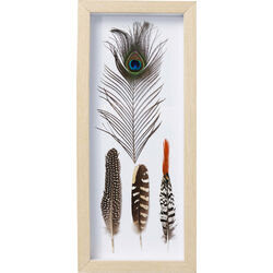 Picture Frame Feathers