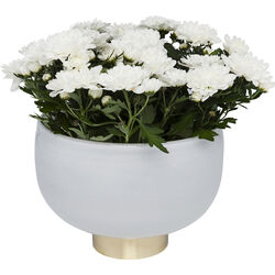 Vase Pure White Bowl 17cm