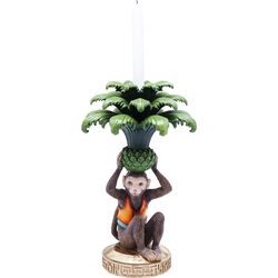 Candelabro Monkey Palm