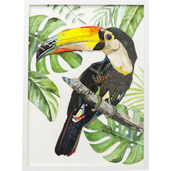Picture Frame Art Paradise Bird Single 70x50cm