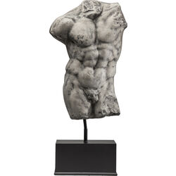 Big Torso Andrea Male with Stand