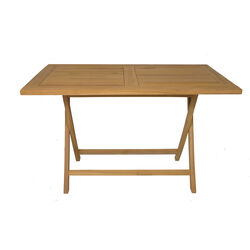 Folding Table Flexi 120x70cm