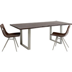 Table Harmony Walnut Silver 200x100cm