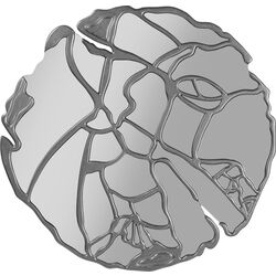 Wall Mirror Pieces Silver Ø100cm